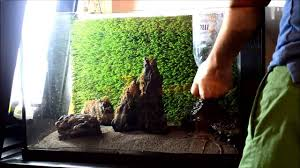 Small Tank Aquascaping 10 Steps Aquascape Aquarium Set Up Build 3 Youtube