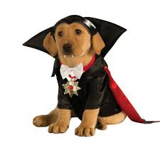 halloween dracula dog costume with same day shipping baxterboo