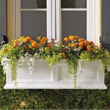 best dressed exterior windows and window boxes classical