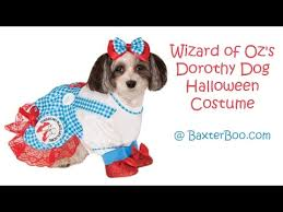 Dorthy Halloween Costume Wizard Oz Dorothy Dog Halloween Costume