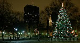 boston common tree lighting costs canadians 242 000