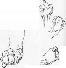 anatomy of the fingers anatomical drawings joshua nava arts
