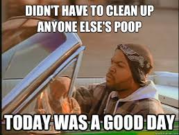 Clean Up Meme - didn t have to clean up anyone else s poop today was a good day