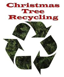 north carolina where and how to recycle your christmas tree after