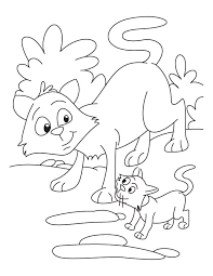 cat kitten coloring download free cat kitten