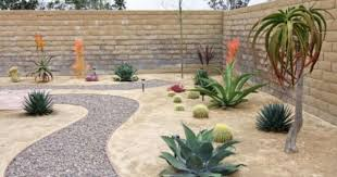 download desert garden ideas solidaria garden