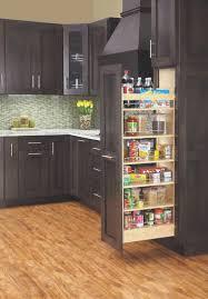 kitchen best kitchen cabinet accessories home design furniture