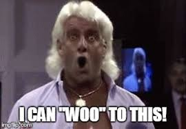 Woo Meme - i can woo to this professional wrestling know your meme