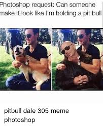 Pitbull Meme Dale - 25 best memes about club penguin getting shut down club