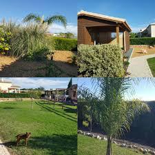 bungalows do sol nascente home facebook