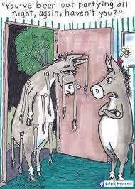 funny donkey cartoon