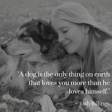 Scottish Love Quotes by Dog Quotes The Ultimate List American Kennel Club
