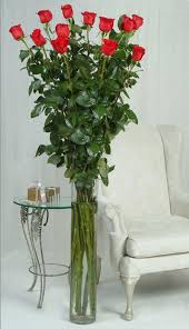 how much is a dozen roses one dozen of the world s tallest roses the green