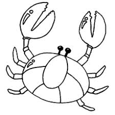 Top 10 Free Printable Crab Coloring Pages Online Crab Coloring Page