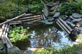 Backyard Pond Landscaping Ideas Emejing Garden Ponds Design Ideas Gallery House Design Ideas