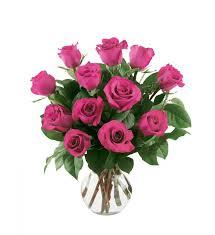 hot pink roses 12 hot pink roses 12hprose 58 46