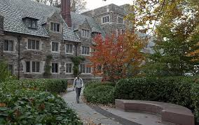 princeton housing floor plans services for your dormitory housing and real estate services