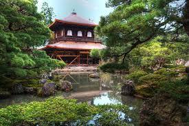 japanese aquascape hraquascape org članci interview with enrico serena