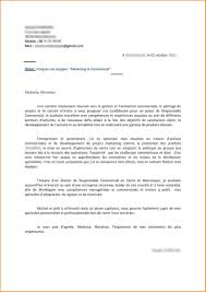 lettre de motivation cuisine collective lettre de motivation chef de cuisine evier cuisine review