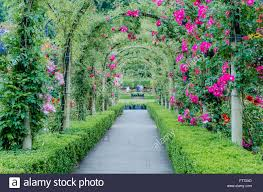butchart gardens garden path stock photos u0026 butchart gardens