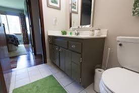 Raising Bathroom Vanity Russet Street Reno The Other Bathroom