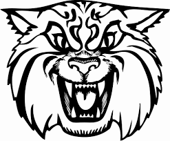 wildcat coloring page bobcat lynx wildcat coloring page free