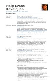 Resume Sample For Programmer by Senior Programmer Resume Samples Visualcv Resume Samples Database