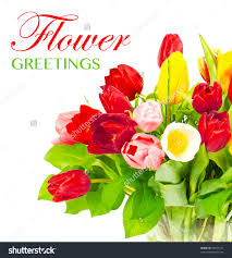 flower greetings card design colorful bouquet of fresh spring save