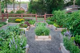 Backyard Shows Farmers For Hire Turn Backyards Into Vegetable Patches News