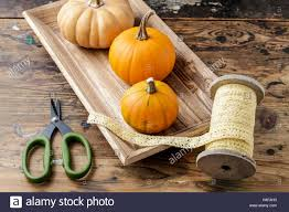 florist at work how to make home decoration with pumpkins moss