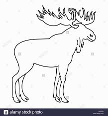 moose template innovation idea moose outline images clip vector