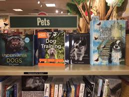 Barnes And Nobles Richmond Va Everythingdogblog Book Review Of Finley Finds Heaven Columbia