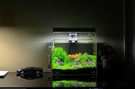 Nano Aquascaping Gallery Aquascape Nano Desk Aquascaping Pinterest Desks Home Awful