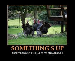 Happy Thanksgiving Meme - the best thanksgiving memes this year iscrap app