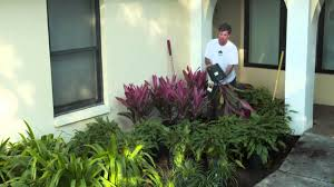 Home Depot Front Yard Design by How To Redesign A Landscape The Home Depot Gardenieres Youtube