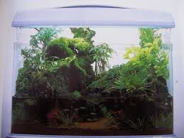 Aquascape Inspiration 116 Best Aquariums Aquascape Inspiration Images On Pinterest