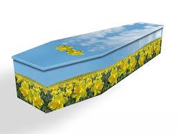 cardboard coffin cardboard coffins swindon hillier funeral service
