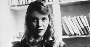 donald barnhouse sylvia plath alleged abuse by ted hughes in unpublished letters