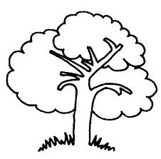 66 dessins de coloriage arbre à imprimer sur laguerche com page 2