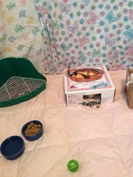 All Living Things Luxury Rat Pet Home by Care The Rat Lady