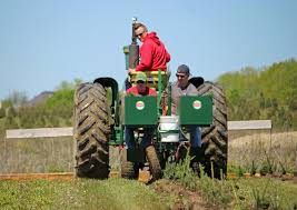 planting christmas tree seedlings at abbey farms view the video