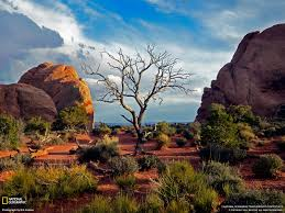 Travel Wallpaper Arches National Park Wallpapers Group 79
