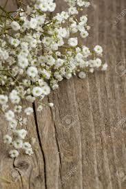 Baby S Breath Flower Bunch Of Gypsophila Baby U0027s Breath Flowers On Old Wooden Table