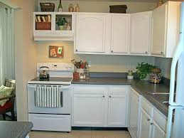 painting oak kitchen cabinets professional cabinet doors spray
