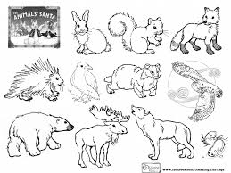 download coloring pages of forest animals ziho coloring