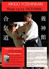 cuisine et santé gaudens stage aikido yoshinkan à gaudens les 14 15 octobre 2017