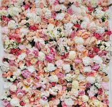 quality flower wall backdrop for hire 250 free delivery