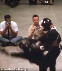 bruce lee u0027s only recorded u0027real u0027 fight is unearthed daily mail