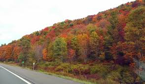 Road Map Of Upstate New York by 2015 Fall Foliage Predictions For Upstate New York