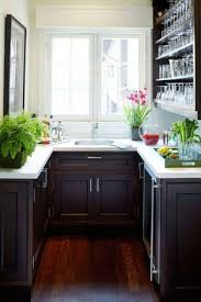 very small kitchen design layout with plant vases and dark wooden